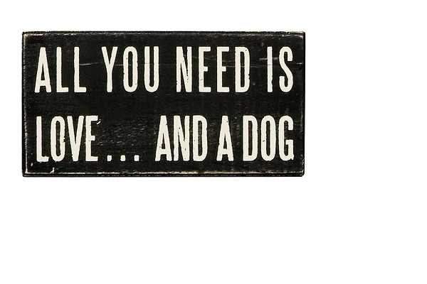 You Post Dog Signs In Your House