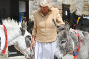 Things You Didn't Know About Camilla, Duchess Of Cornwall